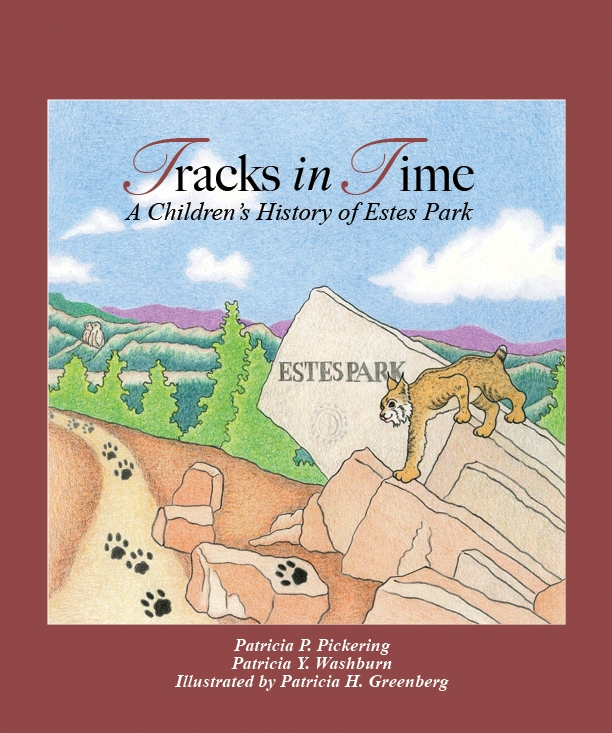 Tracks in time book cover